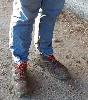 weed whacker shoelaces