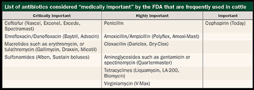 list of antibiotics considered