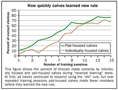 how quickly calves learn chart