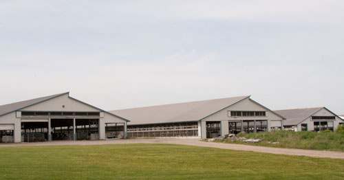 front of freestall barns