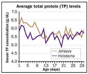 Average total protein levels in colostrum
