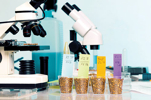 microscope and crop samples