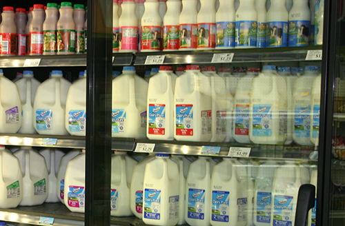 dairy case
