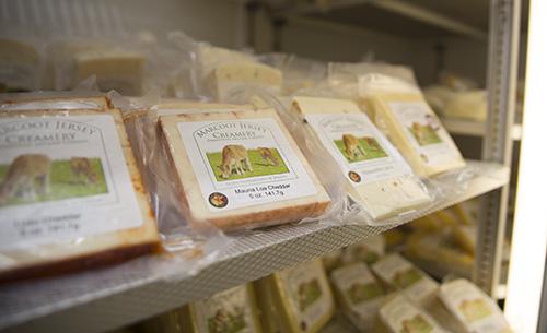 cheese on store shelf