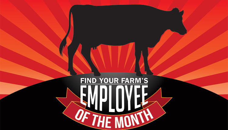170210_70-employee-month