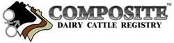 Composite Registries