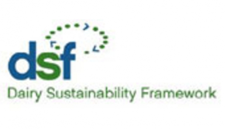 DSF-logo