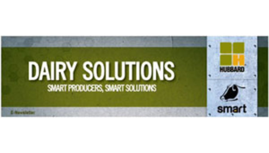 Dairy-Solutions-logo
