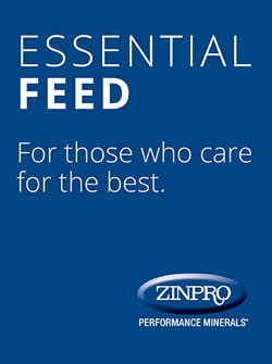 zinpro corporation launches essential feed blog