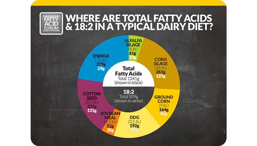 Fatty-Acids-in-Corn-Silage