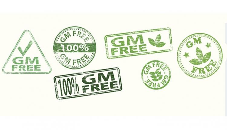 HDN-MS-GMO