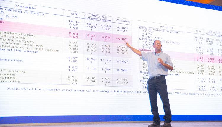 Intel-stillbirths