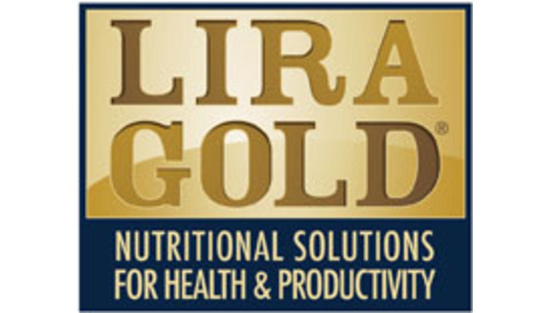 Lira_Gold_Color_Square-logo.jpeg