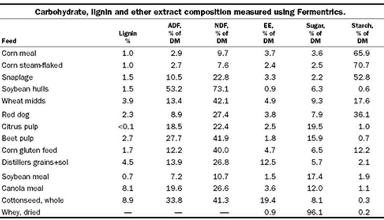 corn-grain-substitutes-1.jpg