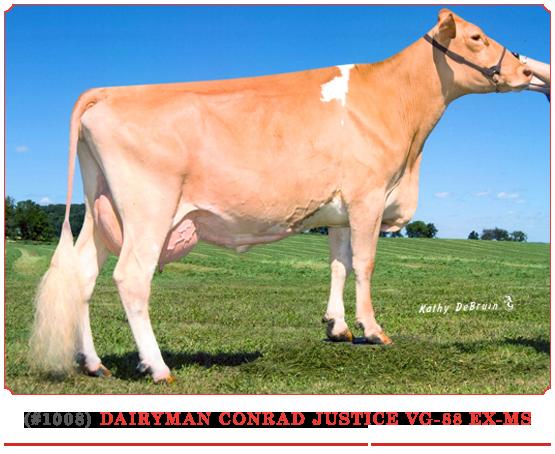 Dairyman Conrad Justice