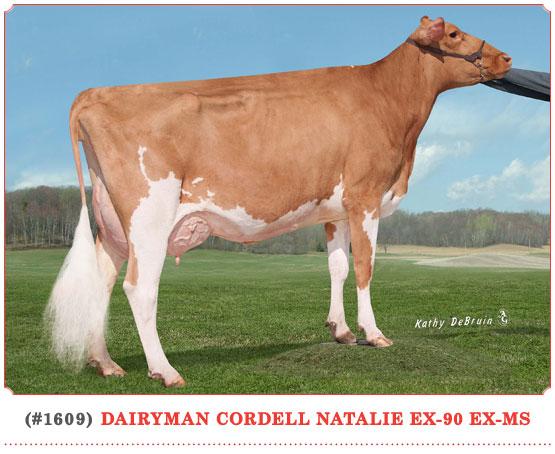 Dairyman Cordell Natalie