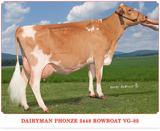 Dairyman Phonze 2448 Rowboat
