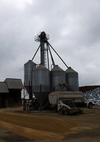 grain bin