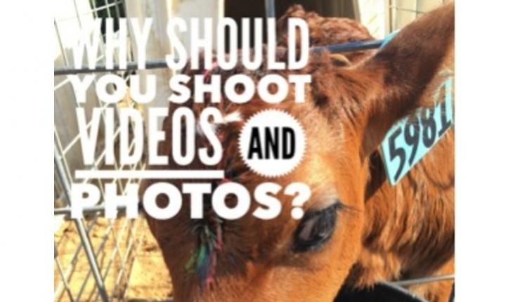 videos-photos