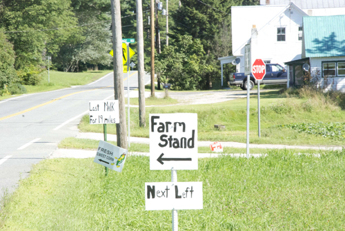 Home-made signs in rural area promoting Last stop for milk for 19 miles